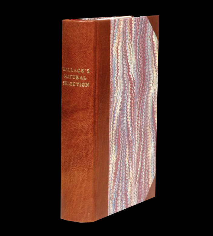 Contributions to the Theory of Natural Selection, A Series of Essays, 1870. Alfred Russel Wallace.