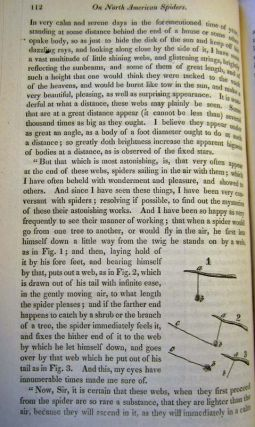 """On North American Spiders,"" in American Journal of Science and the Arts 21 pp. 99-122, 1831. Nicholas Marcellus Hentz."